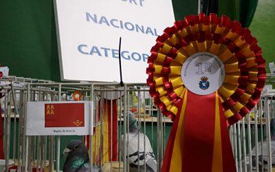 Competiciones Nacionales 2017